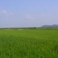 夏の池ヶ原